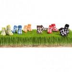 TR011-trumpette-peewee-argyle-baby-socks-lg